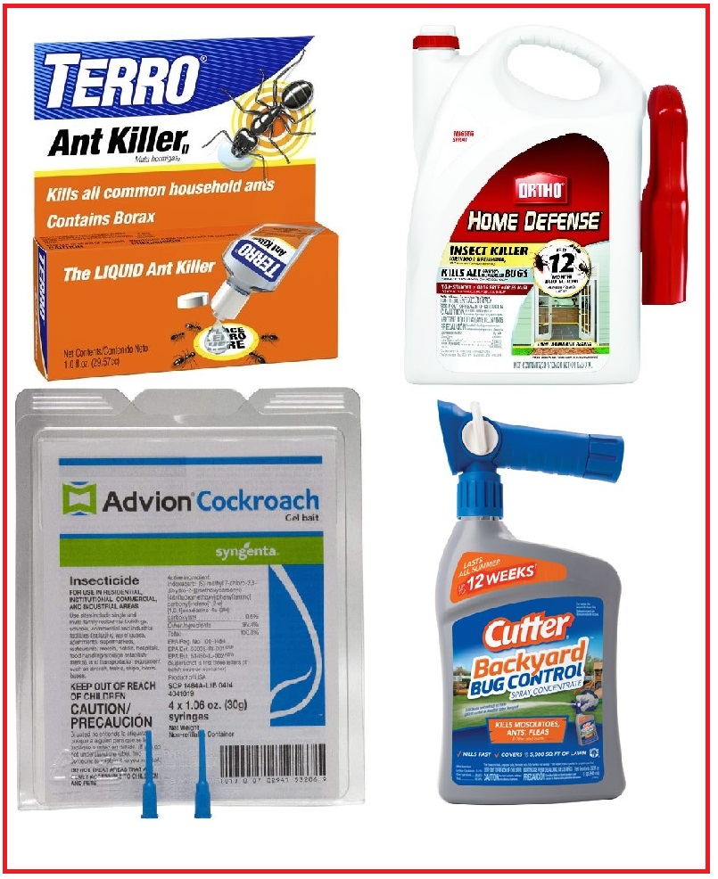 Best insect control lowes and home depot